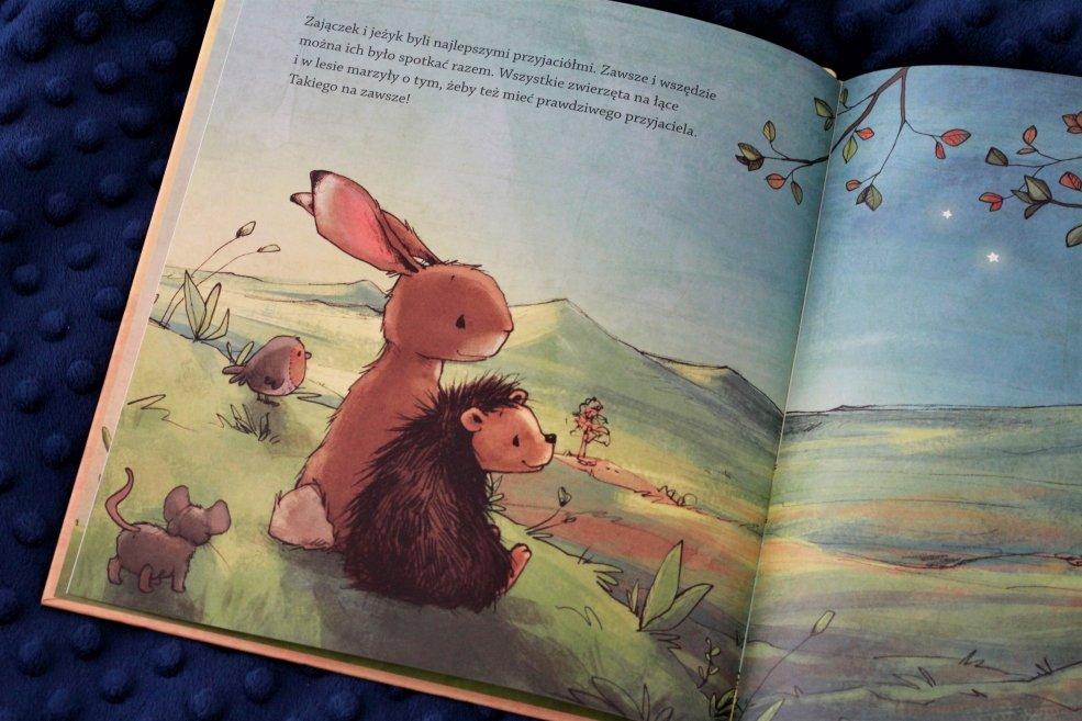 książki o przyjaźni dla dzieci